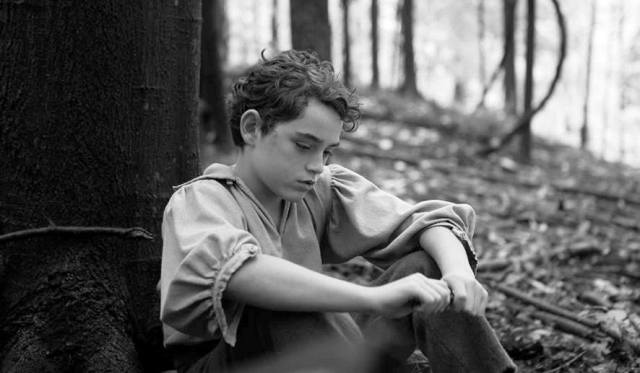 Braydon Denney as young Abe Lincoln in 'The Better Angels' (Amplify)